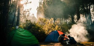 Some-Leave-No-Trace-Things-Every-Camper-Should-Avoid-on-lightroom-news