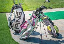 Stand-Bag-VS-Cart-Bag-on-LightRoom